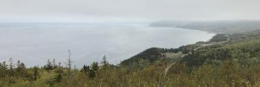 Landschaft im Nebel ...